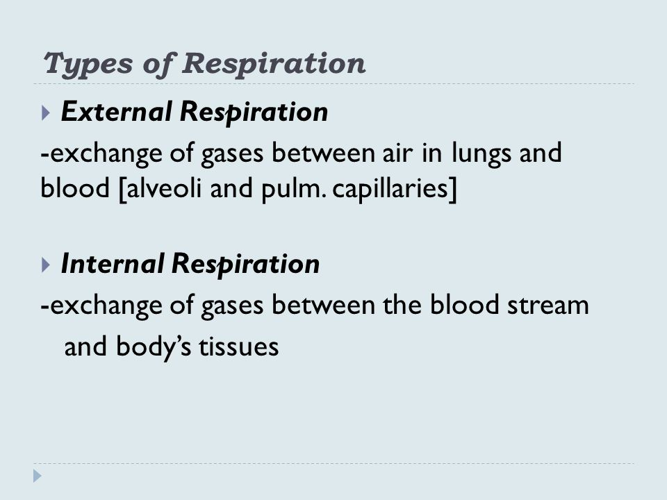 Types of Respiration External Respiration. -exchange of gases between air in lungs and blood [alveoli and pulm. capillaries]